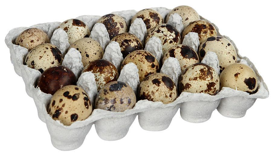 Яйцо перепелиное Углич 20шт