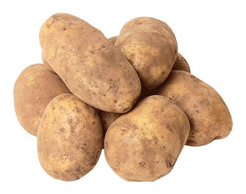 Картофель Белый Немытый