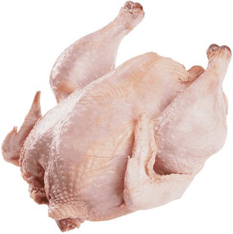 Курица Золотой цепленок для жарки