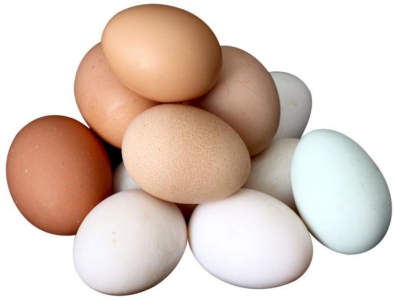 Яйцо столовое первой категории 36дес., Россия