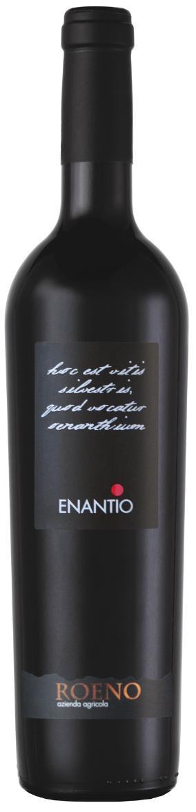 Вино Энантио Вальдадидже Террадеифорти, Италия