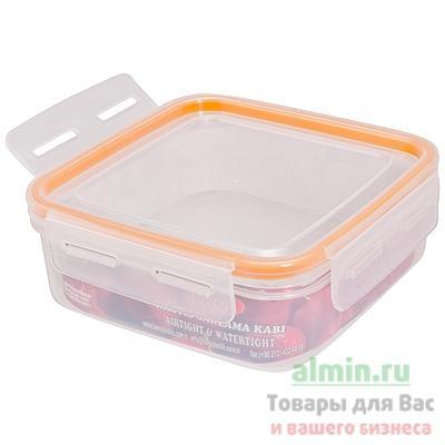 Контейнер Bora герметичный квадратный пластик для пищевых продуктов 0,7 л.