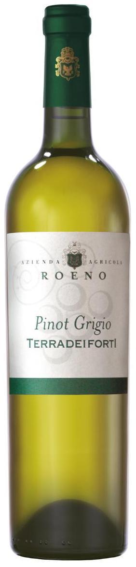 Вино Пино Гриджио, Вальдадидже Террадеифорти, Италия