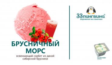 Мороженое 33 Пингвина Сорбет Гренадин Морс брусничный 15%, 1,3 кг., пластиковый контейнер
