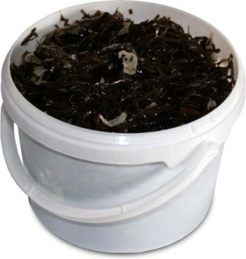 Морская капуста Маринованная 2,5, Россия, 3 кг., пластиковое ведро