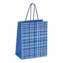 Пакет подарочный 17,8x9,8x22,9 см., в голубую клетку, ламинированный, Золотая сказка
