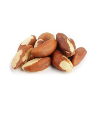 Бразильский орех Золотой Урожай