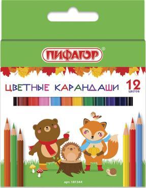 Карандаши цветные Пифагор Малыши-карандаши 12 цветов, укороченные заточенные