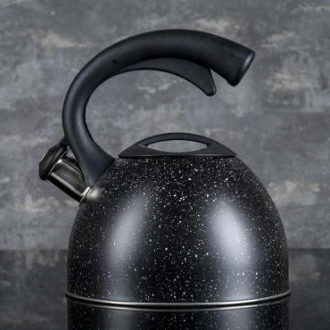 Чайник Доляна Космос 2,5 л. со свистком нержавеющая сталь черный