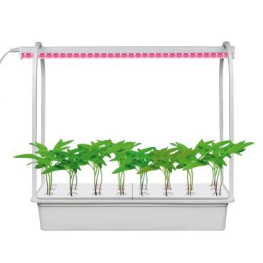 Набор для гидропоники Минисад AQUA SIMPLE, светильник для растений светодиодный с подставкой, спектр для рассады и цветения, белый, ULT-P44B-10W/SPSB IP40 AQUA SIMPLE WHITE, Uniel