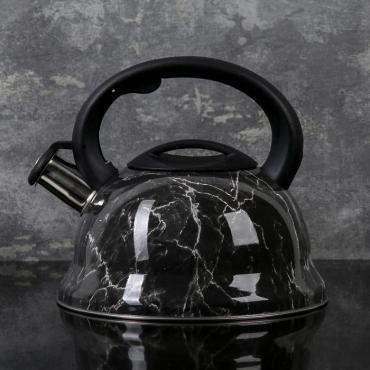 Чайник Доляна Эшфорд 2,8 л. со свистком
