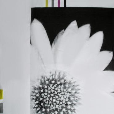 Штора для ванной Доляна Белые цветы 180х180 см. Eva