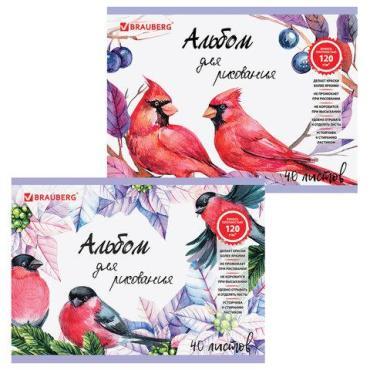 Альбом для рисования Brauberg Птицы, гребень, выборочный лак, подложка, внутренний блок 120 г/м, 205х290 мм, А4, 40 л