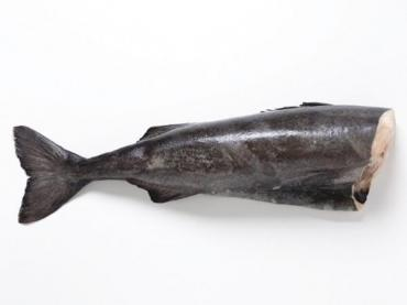 Угольная рыба Черная треска, б/г, с/м, эл. вес.