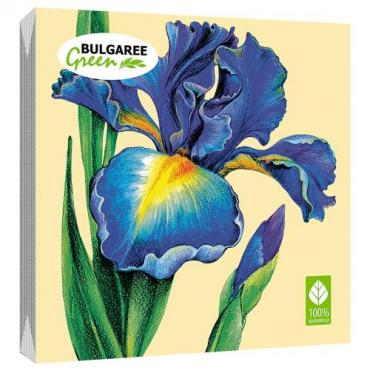 Салфетки бумажные трёхслойные сервировочные 33х33 20 штук Bulgaree Green Ирис, пластиковый пакет