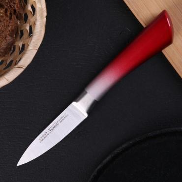 Нож кухонный Спектр цельнометаллический, лезвие 9 см, цвет микс