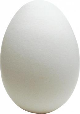 Яйцо куриное столовое С-О 10 шт.