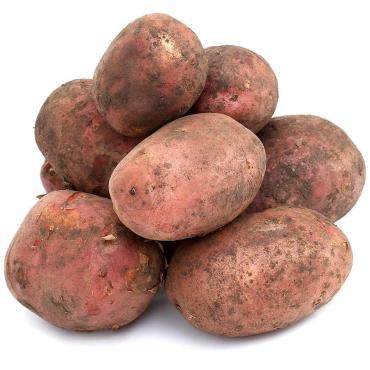 Картофель красный отборный, Ярославская область, Тон, 20 кг., мешок
