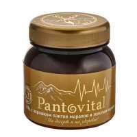 Мед с порошком пантов марала и порошком золотого корня Pantovital Ревитал, 300 гр., пластиковая бутылка