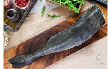 Угольная рыба (Чёрная Треска) ПБГ , 15 кг., картон